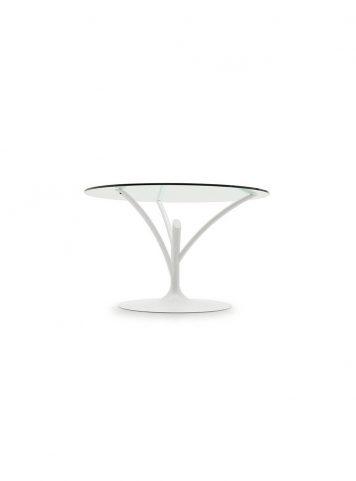 Acacia table