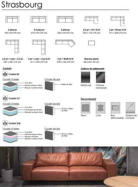 Strasbourg technical sheet